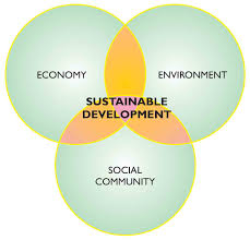 environmental sustainability essay example essay type questions  what is the importance of sustainable development environmental management for sustainable development in essay