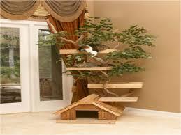 outdoor cat furniture luxury ideas outdoor cat tree