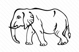 Then you can animate the dashoffset property of these top paths. Elephant Svg Cut File By Creative Fabrica Crafts Creative Fabrica