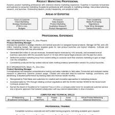 Sales Executive Resume Format 2017 Project Manager Resume Sample Doc