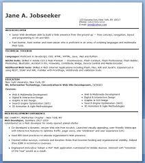IT Developer Resume Sample (Entry Level)
