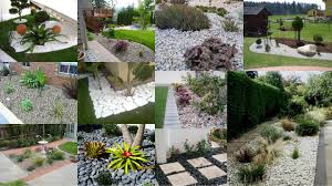 pebbles to cover the empty spaces in garden