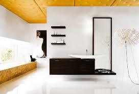 Fancy Bathroom Ceiling Styrofoam Ceiling Tiles Ideas Pictures - House interior ceiling design