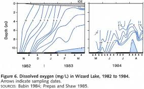 Wizard Lake Depth Chart Wizard Lake