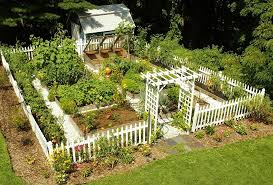 vegetable garden plans futuristic parterre vegetable garden design hilarious amazing home