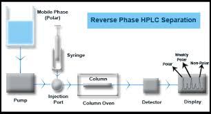 Hplc Principle Bio Resource Reverse Phase Chromatography Methods And Principle