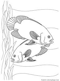 Small Picture Free Coloring Pages Fish Tank Aquarium fish free printable