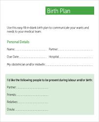 Editable Birth Plan Template Sample Birth Plan 9 Examples In Word Pdf