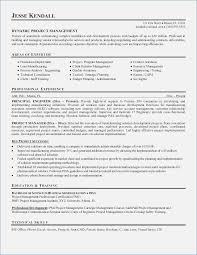 Technical Resume Objective Examples Management Trainee Resume Objective Examples globishme 93