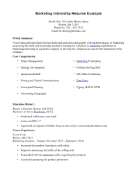 Sample Internship Cv College Internship Resume Examples