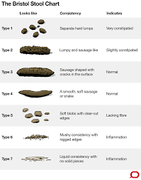 Bristol Stool Chart For Kids What The Consistency Of Your Poo Says About Your Health