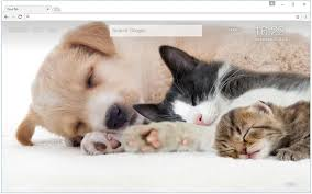 dogs and cats wallpaper. Fine Wallpaper Cats U0026 Dogs Wallpaper HD Cat Vs Dog Themes In And A