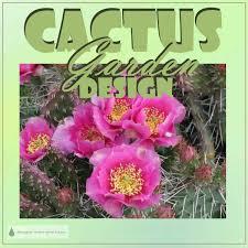 Small Picture Cactus Garden Design my new cactus garden