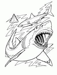 Small Picture Coloring Pages Sharks Children Great White Shark Page New In