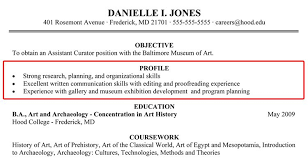 Professional Profile Examples Resume How To Write A Professional