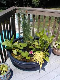 Small Picture Best 25 Mini pond ideas on Pinterest Container fish pond Diy