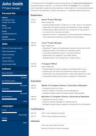 Professional Resume Word Template. Sample Resume Format Word Resume ...