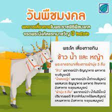 Bangchak - วันพืชมงคลปีนี้ พระโคเสี่ยงทายกิน ข้าว น้ำ และ...
