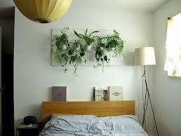 decorative pictures for bedrooms. Exellent Bedrooms Bed Indoor Plants For Bedroom On Decorative Pictures Bedrooms
