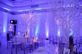 Fire And Ice Decorations Design Fire And Ice Theme Party Decorations Home Design 100 15