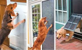 glass door protector dog scratched sliding from dogs
