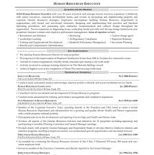 Hr Generalist Resume Sample Civilian And Federal Resumes Resume Valley Hr Generalist 100