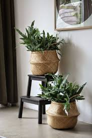 natural baskets, plants, interior plants, plants storage ideas, interior  styling, decoration
