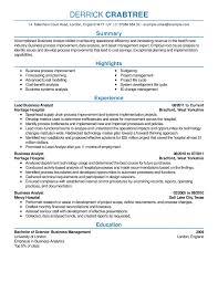Examples Job Resume Examples Good Resumes Examples Sonicajuegos Com