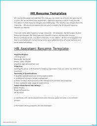 Personal Resume Template Microsoft Word Best Of Resume Maker