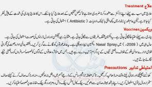swine flu symptoms and treatment in urdu govt emerson college  swine flu symptoms and treatment in urdu