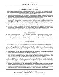 human resources executive resume (airline industry)