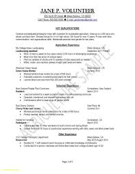 Writing A Resume For College Students Download Now Cv Sample