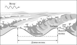 Реферат Водная оболочка земли ru Чем сильнее ветер тем крупнее волны В отдельных случаях они достигают высоты до 20 м и даже до 1 км С глубиной волны затухают
