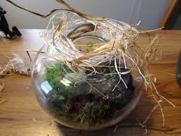 One of the pitfalls of creating a terrarium is finding the perfect stopper,  or lid, that will not detract from the beauty of the planted jar or vase.