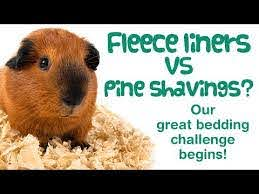 pine bedding vs fleece liners for