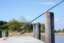 Best Spinning Rod under 100 Dollars - Reviews and Buyer's Guide