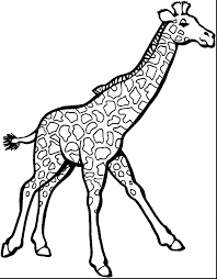 Small Picture awesome giraffe coloring pages with zoo animal coloring pages