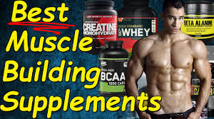 best muscle building supplements best supplements for muscle gain muscle growth supplements you