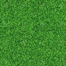 grass texture Idealvistalistco