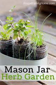 an easy diy windowsill herb garden this window sill herb garden is perfect to grow