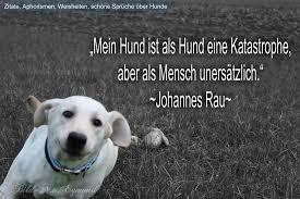 Zitate Aphorismen Weisheiten Schöne Sprüche über Hunde