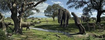 Wildlife Of The Miocene Era, Artwork by Mauricio Anton | Prehistoric world,  Prehistoric animals, Prehistoric creatures