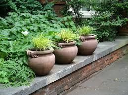 pots grasses