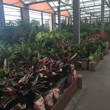 garden centers rochester ny. Photo Of The Garden Factory - Rochester, NY, United States. Plants Everywhere Centers Rochester Ny