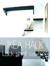 wall mounted cat trees furniture tree diy ca