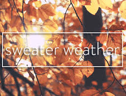 Image result for autumn is sweater weather gif