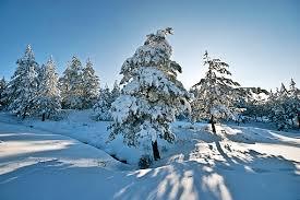 Resultado de imagem para neve na serra da estrela