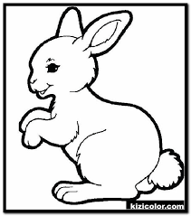Color in this picture of a baby bunny and share it with others today! Cute Bunny Free Printable Coloring Pages For Girls And Boys Page 1