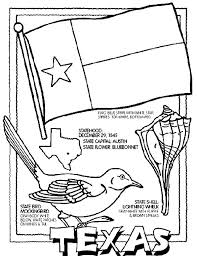 Small Picture 38 best Texas State Symbols unit study images on Pinterest Unit