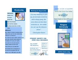 benefits of stem cell research essay stem cell research benefits essay